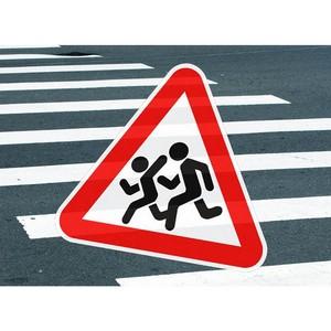 Васильев: Необходимо обращать больше внимания на безопасность дорог, а не на установку стационарных камер