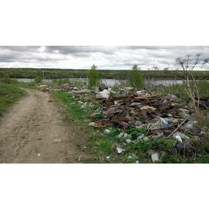 ОНФ в Коми призвал местные власти ликвидировать свалки у берега Вычегды в Жешарте