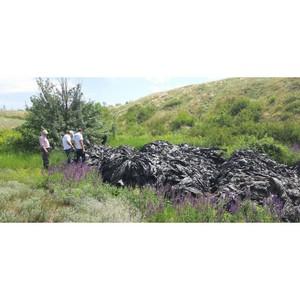 Волгоградские активисты ОНФ призвали власти ликвидировать свалку полиэтилена у поселка Каменный