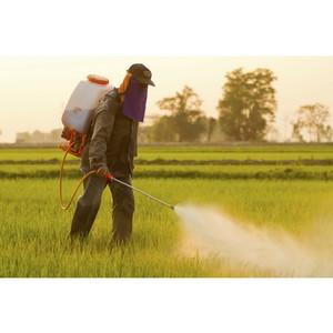 Эксперты ОНФ призывают вернуть госконтроль за применением пестицидов в сельском хозяйстве