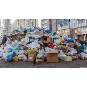Цунаева: В существующих условиях нельзя рассчитывать тариф исходя из количества контейнеров