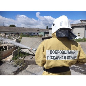 Апанович: Введение национальных стандартов для добровольцев-пожарных повысит их профессионализм и надежность