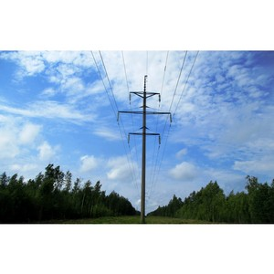 Владимирэнерго реализует программу по расчистке просек воздушных линий электропередачи