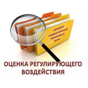 Виктория Бессонова: Процедура ОРВ — чтобы услышать бизнес