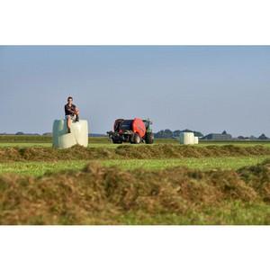 Как сохранить миллион на заготовке кормов