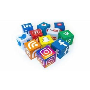 Осмысление хаоса? Алгоритмы ищут в социальных медиа источники роста криптовалют.