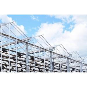 ПАО «ФСК ЕЭС» обеспечит выдачу 20 МВт мощности тепличному комплексу «Новый»