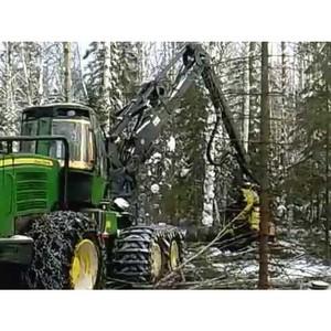 В Архангельской области ведется работа по развитию лесопромышленного комплекса
