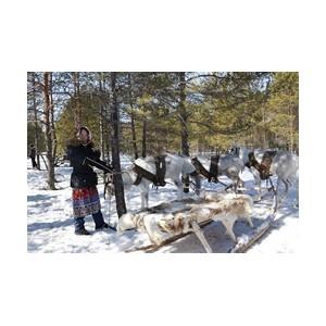 «РуссНефть» выполнила обязательства по компенсационным выплатам коренным народам Севера