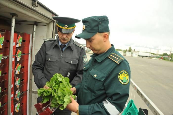 Несмотря на ночное время и дождь санкционные овощи не пустили в Смоленскую область