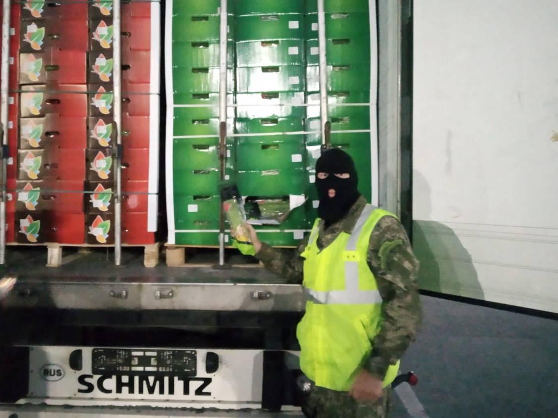Смоленские таможенники задержали фуру с подложными номерами