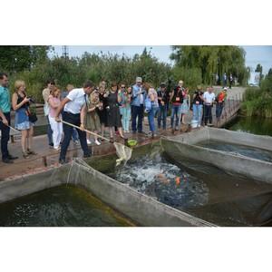 За 20 лет в водоем Курской АЭС выпущено свыше 100 тонн рыбы