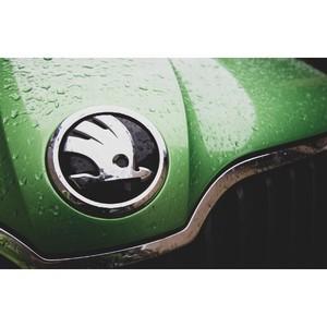 Рейтинг дополнительных опций при покупке автомобиля в Петербурге