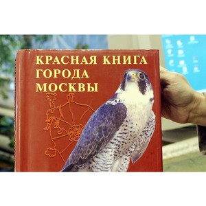 После обращения ОНФ правительство столицы выпустит новую редакцию Красной книги Москвы