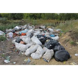 ОНФ просит власти убрать более 20 свалок в селе Кондрашовка
