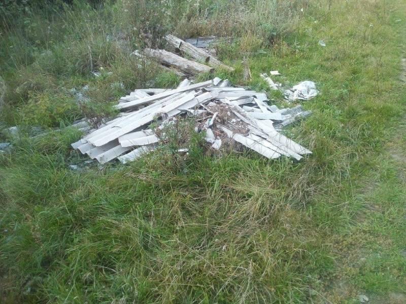 В Темниковском районе обнаружили несанкционированные свалки