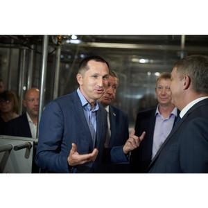 Рынок мягких сыров в России: перспективы и драйверы роста