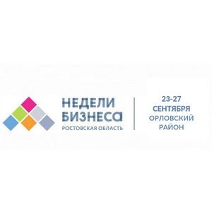 """""""Недели бизнеса"""" для МСП в п. Орловском Ростовской области"""