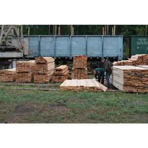 В Сибири предотвращена контрабанда лесоматериалов в крупном размере