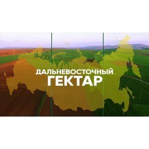 Более чем 400 жителям Бурятии одобрили «дальневосточный гектар»