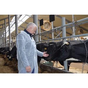 Алексей Котлячков посетил ферму в Демьяново