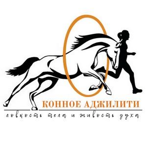 В России провели первое онлайн соревнование по Конному Аджилити