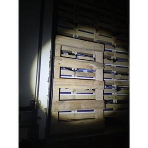 50 тонн груш без фитосанитарных документов задержали на Смоленщине