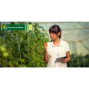 РСХБ назвал сферы АПК с наибольшим вкладом фермеров и рентабельностью