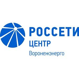 Воронежэнерго исполнил более 2 тыс договоров техприсоединения к сетям