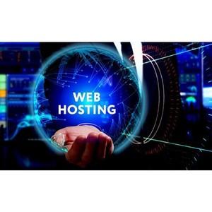 Хостинг для сайта: описание, разновидности и особенности