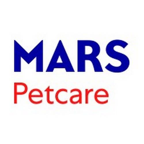 В России стало на 12 млн больше домашних питомцев - опрос Mars Petcare