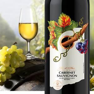 Дизайн Студия 13 продолжила работу над расширением ассортиментного ряда вин для Агрофирмы Чимишлия