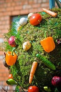 «Овощная ярмарка Campbell's®» на Пикнике «Афиши»-2010