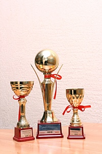 Продолжается итоговое голосование в рамках премии «Лучший работодатель Воронежской области -2011»