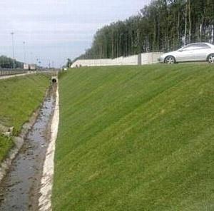 """Смарт Роллы для озеленения аэропорта """"Внуково-2"""""""