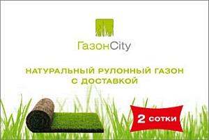 Компания «ГазонCity» выводит на рынок новый формат продажи рулонного газона  - Комплекты «Натуральный рулонный газон с доставкой»