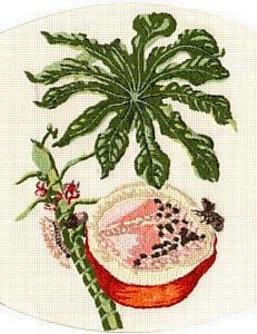 «Ботаническая иллюстрация» Серия компьютерных вышивок Михаила Воробейчика