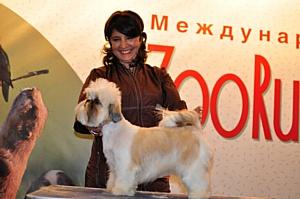 Приглашаем специалистов и любителей домашних животных на выставку «Зоо Россия 2012»
