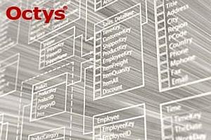 Системный интегратор «Октис» представил новую программную разработку