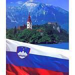 Российских предпринимателей ждут Деловые Встречи с международным бизнес сообществом