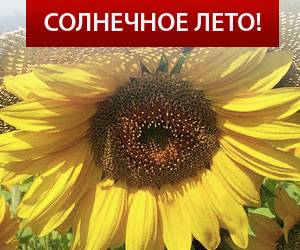 ТрансЛинк: новая акция «Солнечное лето»