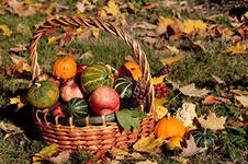 Урожайный на нарушения сентябрь