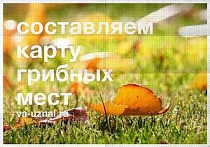 Сделай осень Яркой!
