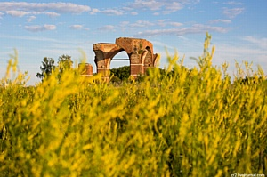 В  России хотят создать первый в России археологический парк