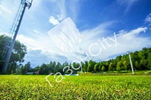 Рулонный газон от ГазонCity на стадионе Сборной России!