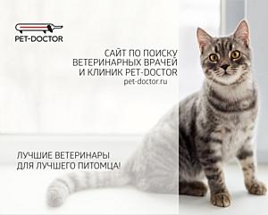 Сервис по поиску ветеринарных врачей и клиник pet-doctor.ru