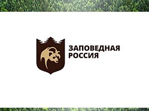 Брендинговое агентство представило «Заповедную Россию» миру