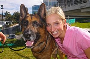 На телеканале «Ю» стартует реалити про ветеринара с большим сердцем