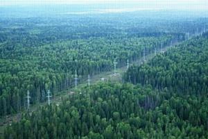 МЭС Северо-Запада приступили к расчистке трасс и расширению просек линий электропередачи 220–750 кВ