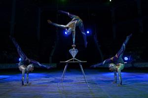 А не сходить ли в цирк ... в Якутии?